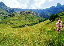 There are few views in the world more captivating thant the Amphitheatre of the Northern Drakensberg (KwaZulu Natal Province)