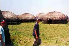 Traditional Zulu Huts at a local community cultural village